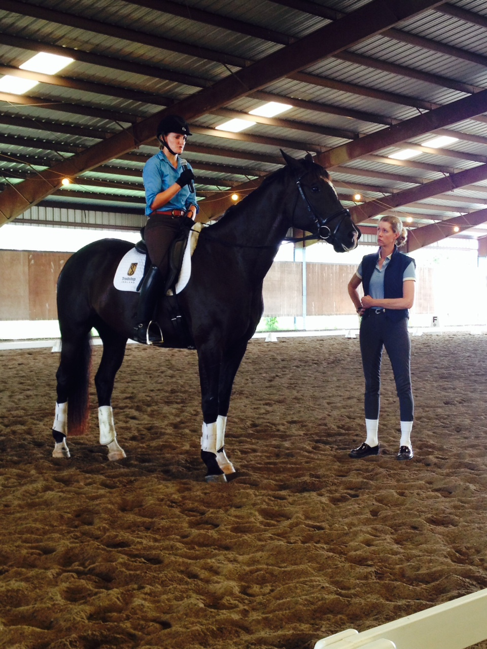 Usdf instructor riding workshop recap arkansas dressage society alexducellieemullerrumba3 cathyzappeellie5 jessicadavidenasriver6 clinicgroup2 1betcityfo Gallery