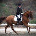 Demo Riders Needed for Dressage Symposium