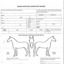 EIA (Coggins) Verifier Certification Class