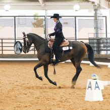 Judging Western Dressage at Schooling Shows – What USDF L-Graduates need to know