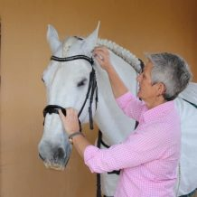 Schedule for the Horse By Horse Bit Clinic
